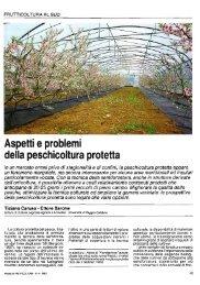 Aspetti e problemi della peschicoltura protetta - Università di Palermo