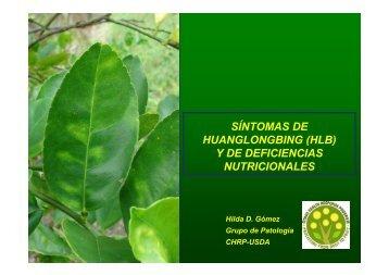 Sintomas de HLB Y de Deficiencias Nutricionales