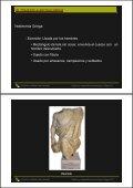 grecia - Diseño de calzado en la UMH - Page 6