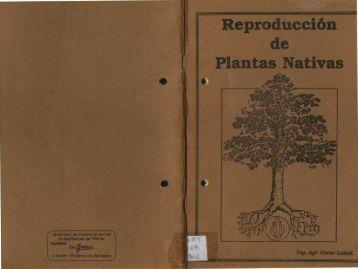 Lebed Oscar – Reproducción de Plantas Nativas - Cultivos Urbanos