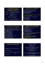 Presentazione del progetto - Archivio ARSIA