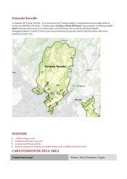 Scarica la scheda dell'area in pdf! - Provincia di Firenze
