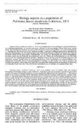 Biology aspects in a population of Pelobates fuscus insubricus ...
