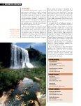 sudoeste paulista - BRSTOCK - Page 7