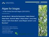 Algae for biogas in Central Denmark Region - Nordic Innovation