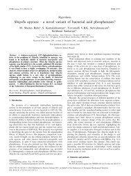 Shigella apyrase ^ a novel variant of bacterial acid phosphatases?