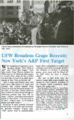 UFW Broadens Grape Boycott - Page 3