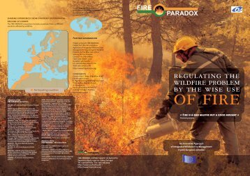 Download the leaflet - Fire Paradox