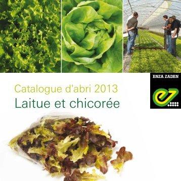 Catalogue salade d'abri - Enza Zaden
