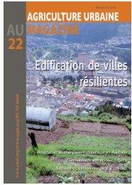 Edification de villes résilientes N° 22 - novembre 2010 - IAGU