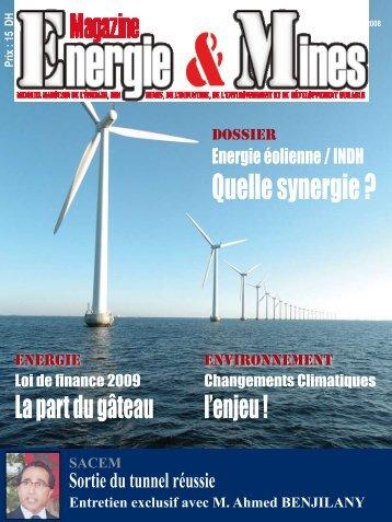 Quelle synergie ? - Magazine Energie & Mines