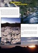 L'aventure du projet SPELE-EAU à Siou Blanc - accueil - Page 5