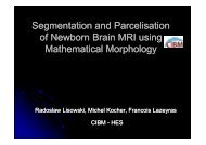 Segmentation and Parcelisation of Newborn Brain MRI using ...