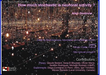 How much stochastic is neuronal activity ? Alain Destexhe