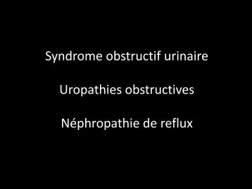 Syndrome obstructif urinaire Uropathies obstructives ... - UBIR