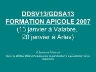 ddsv13 gdsa13 formation apicole 2007 - GAEG