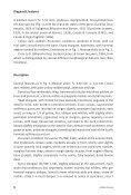 Biharotrechus - Naturhistorisches Museum Bern - Page 4