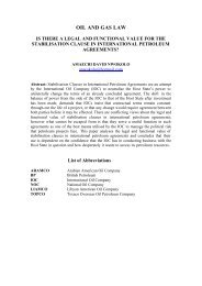 Is there a Legal and Functional value for the Stabilisation Clause in ...