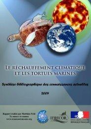 Le réchauffement climatique et les tortues marines - 2009