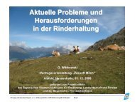 Aktuelle Probleme und Herausforderungen in der Rinderhaltung