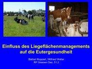 Einfluss des Liegflächenmanagements auf die Eutergesundheit