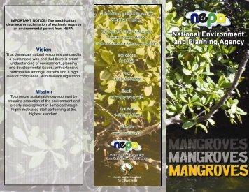 Brochure (mangrove) (2).pub
