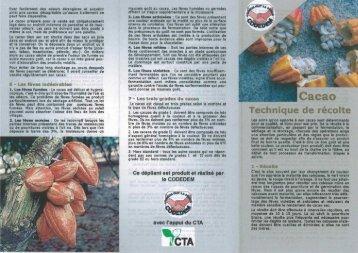 La récolte du cacao - CTA Partners Portal