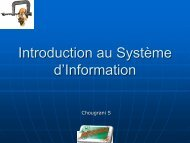 Introduction au Système d'Information - ressma