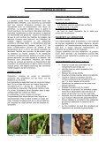 Feu Bactérien (Erwinia Amylovora) - ONSSA - Page 2