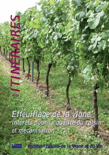 intérêts pour la qualité du raisin et mécanisation - Institut Francais ...