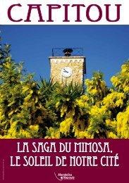 Capitou : La saga du Mimosa... - Mandelieu La Napoule