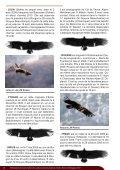 Faune-PACA Publication n°5 - files.biolovision.net - Page 6