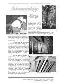 Datation par dendrochronologie Maison des Gardes à Capdenac-le ... - Page 5