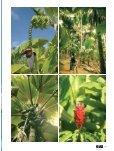 Les Seychelles - Magazine Sports et Loisirs - Page 4