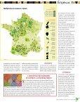 Le secteur des semences français - SeedQuest - Page 3