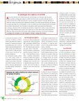 Le secteur des semences français - SeedQuest - Page 4