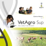 VetAgro Sup - L'Etudiant