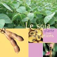 Le soja, de la plante à ses utilisations
