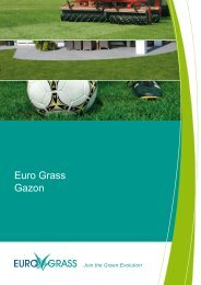 Euro Grass Gazon