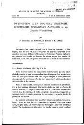 Isopode Flabellifère - Institut Scientifique