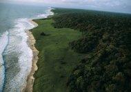 Les nouveaux parcs nationaux vont aider à générer de ... - Le Gabon