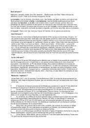 Texte de thierry Fiorilli dans le Journal de Poche