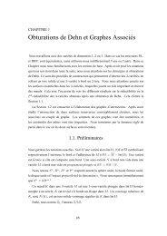 Obturations de Dehn et Graphes Associés - CMI