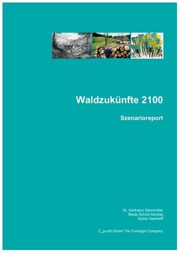 Szenario-Report (PDF) - Ioew.net