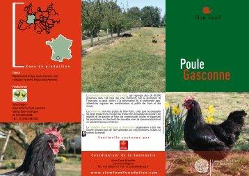 Poule Gasconne - Slow Food France