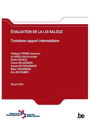 Troisième rapport intermédiaire - Dienst voor het Strafrechtelijk beleid