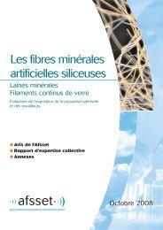 Les fibres minérales artificielles siliceuses - Afsset