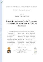 Etude expérimentale de transport turbulent au bord d'un plasma de ...