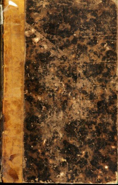 Jonc Tapis Pare-vue roseaux Tapis roseaux vue protection de coffre tapis verset mesure