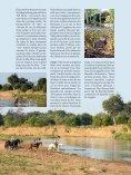 001-127_109500205 SL No 39 F - Limpopo Horse Safaris - Page 2